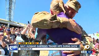 Navy husband surprises trainer wife during show - Video