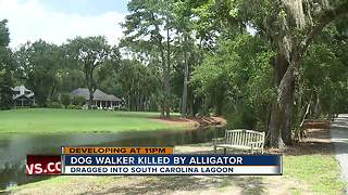 Alligator kills woman trying to protect her dog at resort - Video