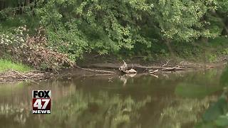 UPDATE: Human bones found in Grand River - Video