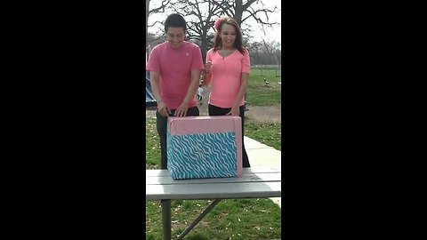 Expecting couple host gender reveal party