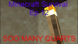 Minecraft Survival (Ep 12) SOO MANY QUARTS!!