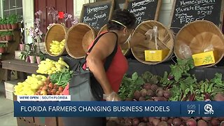 New website helping Florida farmers connect with customers
