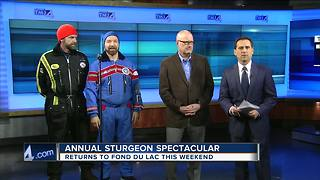 Annual Sturgeon Spectacular is this weekend - Video