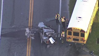 School bus crash in Zephyrhills sends one to hospital