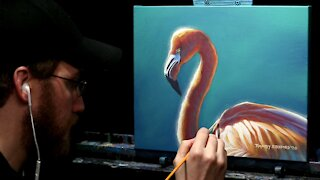 Acrylic Wildlife Painting of a Flamingo - Time Lapse - Artist Timothy Stanford