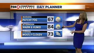 Warm and Humid Through the Weekend - Video