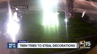 Teen tries to steal Christmas decorations in Peoria - Video
