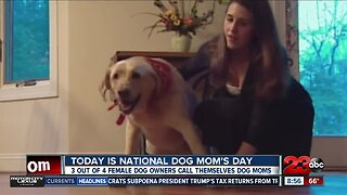 May 11 marks National Dog Mom's Day