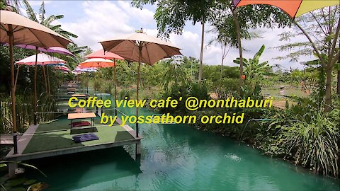 Coffee view cafe' @nonthaburi by yossathorn orchid