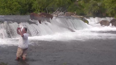 Man Taking Selfie Dangerously Close to Feeding Bears Could Be Charged