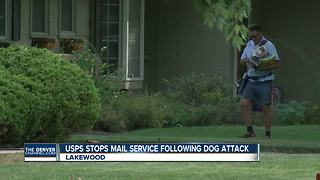 USPS halts mail service for Lakewood neighbors after dog attacks carrier - Video