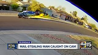 Man caught on camera stealing mail in Glendale - Video