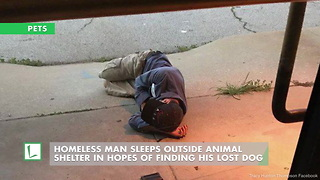 Homeless Man Sleeps Outside Animal Shelter In Hopes Of Finding His Lost Dog - Video