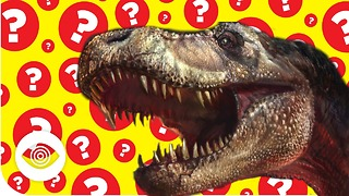 Are Dinosaurs Still Alive? - Video