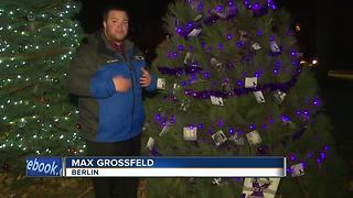 Christmas tree honors domestic violence victims - Video