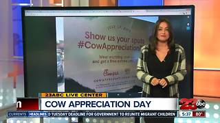 Cow Appreciation Day: Free Chick-Fil-A - Video