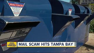 Warning: Protect yourself from the Tampa Bay mail scam - Video