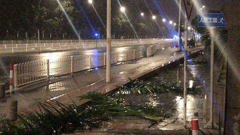 Typhoon Mangkhut Winds Leave Trees Astrew in Zhuhai