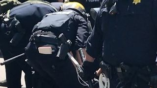 Riot Police Arrest Demonstrators During Berkeley Rally - Video