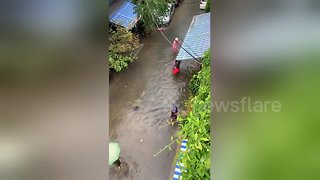 People go fishing in the streets after heavy rains cause flooding in Vietnam