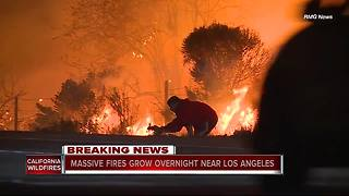 Southern California Wildfire: Driver pulls over to save wild rabbit from flames - Video