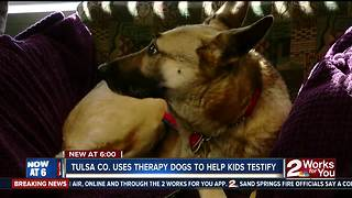 Tulsa County Therapy Dogs Help Kids Testify - Video