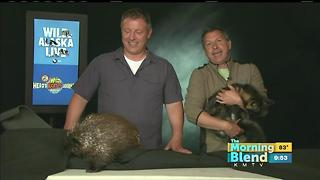 Chris and Martin Kratt from