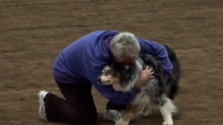 Agility dog's emotional final run will bring tears to your eyes! - Video