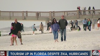 Tourism up in Florida despite Zika and Hurricanes - Video