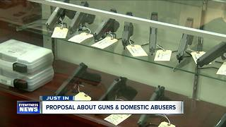 Proposal would take guns away from domestic abusers - Video