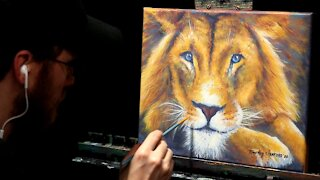 Acrylic Wildlife Painting of a Resting Lion - Time-lapse - Artist Timothy Stanford