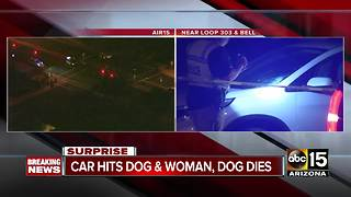 Woman struck by car after chasing dog into street - Video