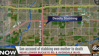 Son accused of stabbing mother to death in Avondale - Video