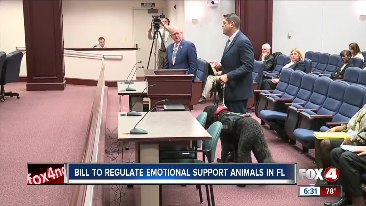 Florida bill combating abuse of pets as emotional support animals makes headway