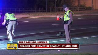 Female pedestrian dies in hit-and-run accident on U.S. 19 in Hudson