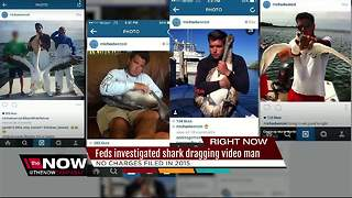 Feds investigated shark dragging video man - Video