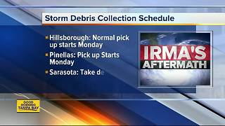 Storm debris collection schedule around Tampa Bay Area - Video