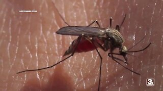 Douglas County Health Dept. reports first West Nile Virus case this year
