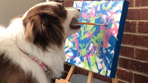 Talented Dog Paints Masterpieces For Charity