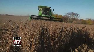 Local farmers worry about impact of tariffs - Video
