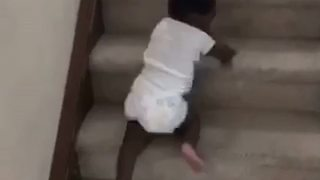 Hilarious Little Boy Slides Down the Stairs - Video