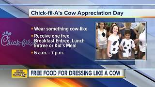Get free chicken for Cow Appreciation Day at Chick-fil-A - Video