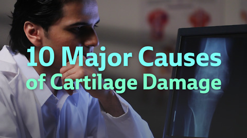 Top Ten Causes of Cartilage Loss