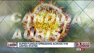 Deadly Fungus Spreading Across Country