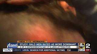 Study: Bald men considered more dominant - Video