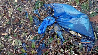 Chile To Become First South American Country To Ban Plastic Bags