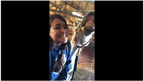 Watch this horse hilariously smile for the camera on command!