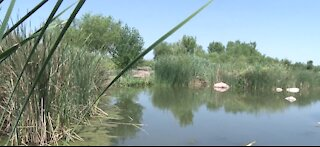 Wetlands Park in Clark County plans to expand with nature play center