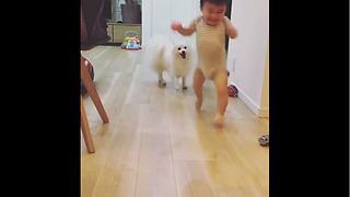 Dog And Baby Take Turns Playing Fetch - Video