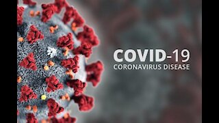 Full documentary, parts 1-4 from Dutch researcher Janet Ossebaard about COVID-19